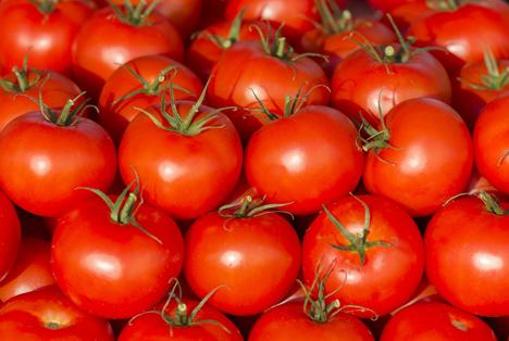 Bildquelle: Shutterstock. cherry tomaten