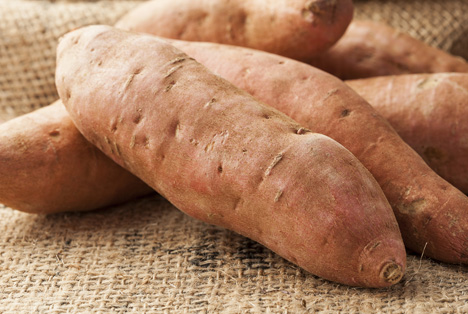 Bildquelle: Shutterstock.com Süßkartoffel