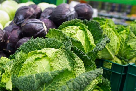 Bildquelle: Shutterstock.com Kohl Gemüse