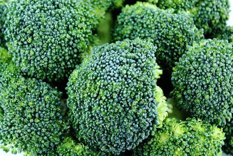 Bildquelle: Shutterstock.com Broccoli