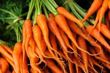 Bildquelle: Shutterstock. Karotten Baby