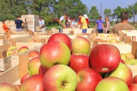 Bildquelle: Shutterstock.com Arbeiter