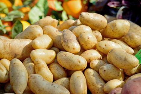 Marktbericht auf der 65. Internationalen Kartoffel-Herbstbörse