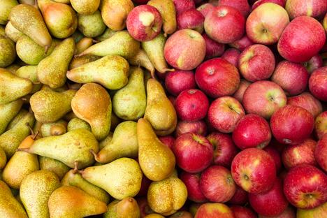 Bildquelle: Shutterstock. Apfel Birnen