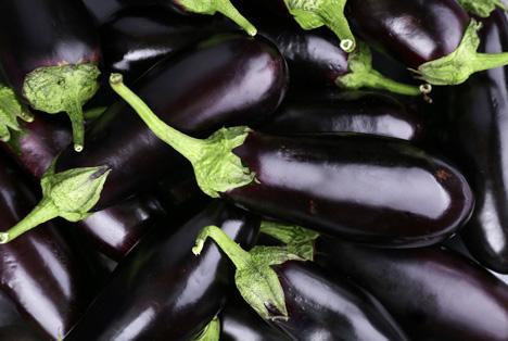 Bildquelle: Shutterstock.com auberginen