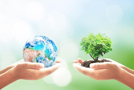 Bildquelle: Shutterstock. Erde