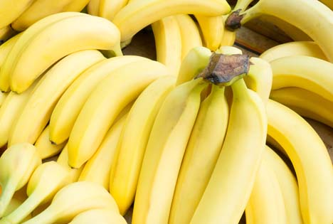 Bildquelle: Shutterstock. Bananen Bio