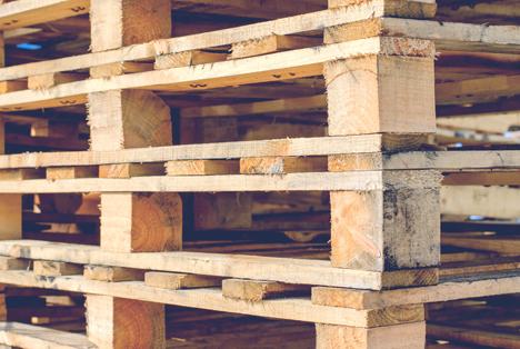 Bildquelle: Shutterstock.com paletten