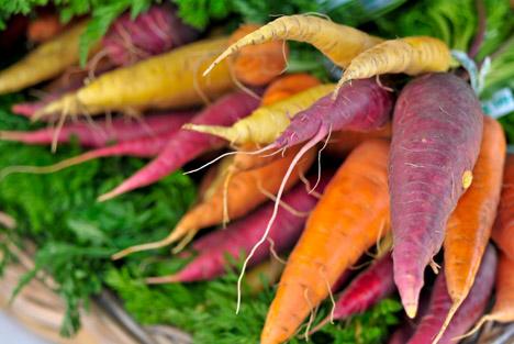 Bildquelle: Shutterstock.com Karotten