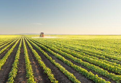 Bildquelle: Shutterstock.com Pflanzenschutzmittel