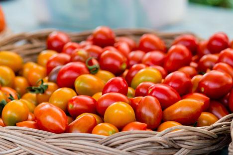 Bildquelle: Shutterstock.com Tomaten sorten
