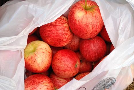 Bildquelle: Shutterstock. Kunststofftüten plastic Apfel