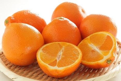 Bildquelle: Shutterstock.com Orangen Minneola