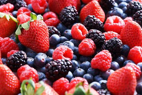 Bildquelle: Shutterstock.com Beeren