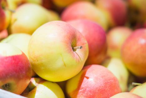 Europäische Apfelpreise im Durchschnitt besser