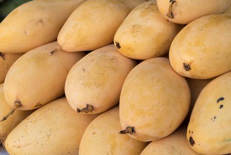 Bildquelle: Shutterstock. Mango