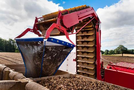 Bildquelle: Shutterstock.com Kartoffel ernte