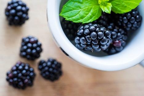 Bildquelle: Shutterstock.com Brombeeren