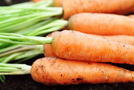 Gemüseproduktion 2016 Österreich: Leicht unterdurchschnittliches Ernteergebnis