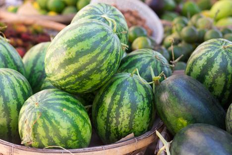 Bildquelle: Shutterstock.com Wassermelonen