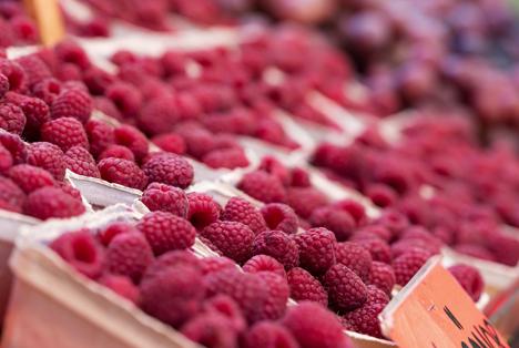 Bildquelle: Shutterstock.com Himbeeren