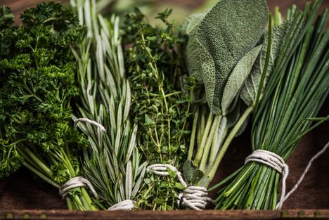 Bildquelle: Shutterstock.com Kräutern