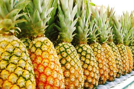 Bildquelle: Shutterstock. Ananas