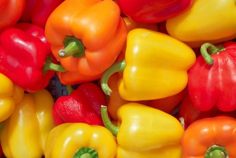 Bildquelle: Shutterstock.com Paprika