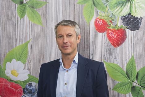 Der führende Vize-Präsident und Geschäftsführer EMEA von Driscoll's, Theo Houwen