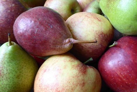 Apfel Birnen