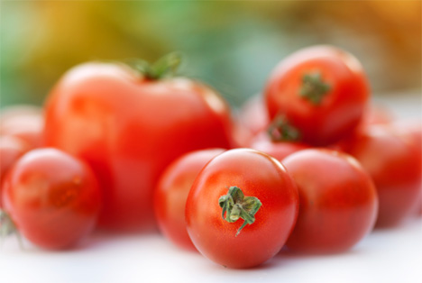 LAVA: Internationale Tomato Conference zeigt Trends auf