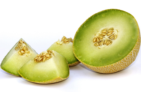 Bayer Galkia Melone