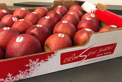 Das neue Design von Crimson Snow® Apples.
