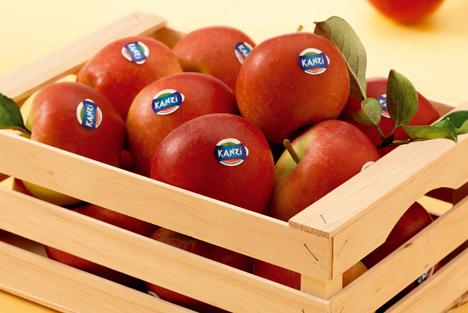 Kanzi®-Apfel