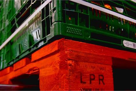 Foto © LPR