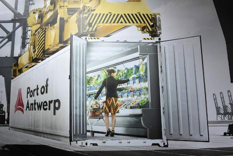 Immer mehr Kühlcontainer im Hafen Antwerpen