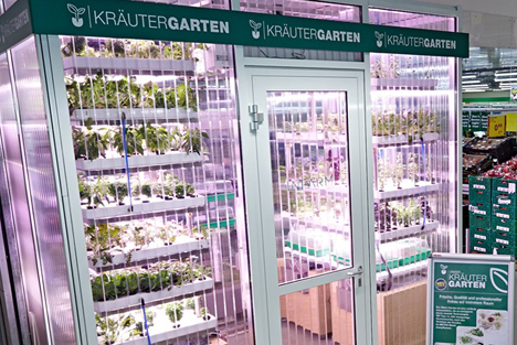 Foto © Infarm Metro hightech-greenhouse-infarm