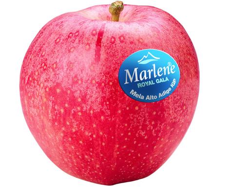 Marlene® Apfelmarke