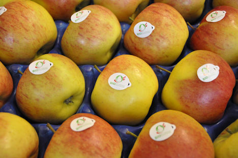 Apfel Bio Suisse