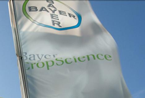 Quelle: Bayer AG Fahnen