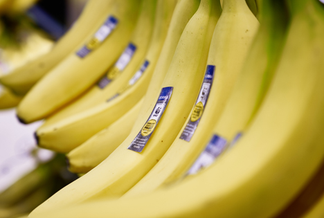 Edeka Bananen. Foto © EDEKA ZENTRALE AG & Co. KG