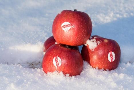 Foto © Crimson Snow