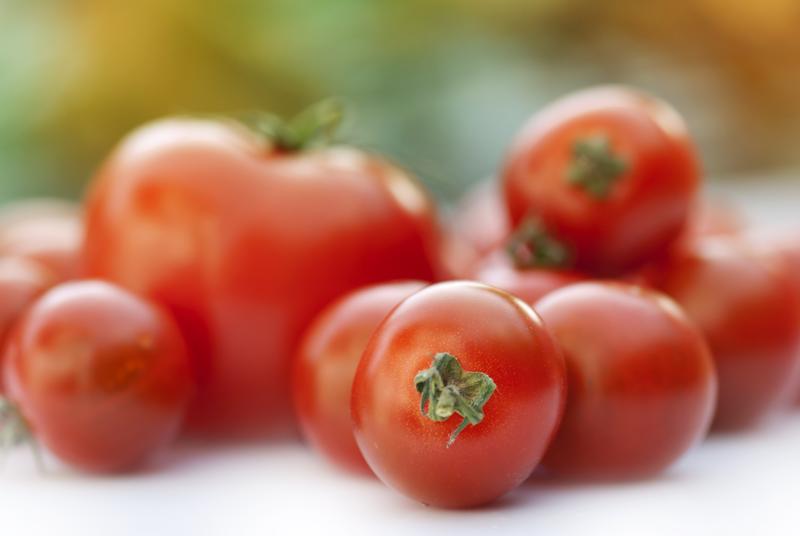 viele schweizer tomaten auf dem markt dank hitze fruchtportal. Black Bedroom Furniture Sets. Home Design Ideas