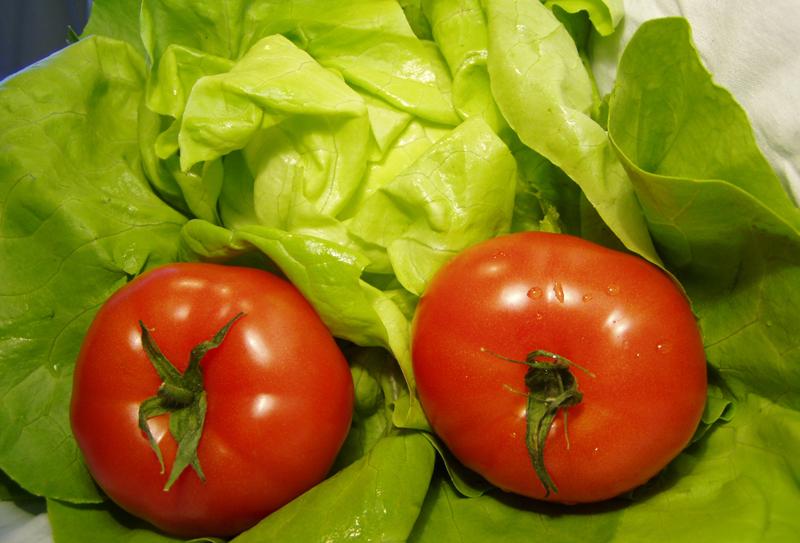 Tomate Salat