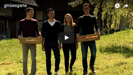 "Schweizer Start-Up ""gmüesgarte"". Video YouTube"