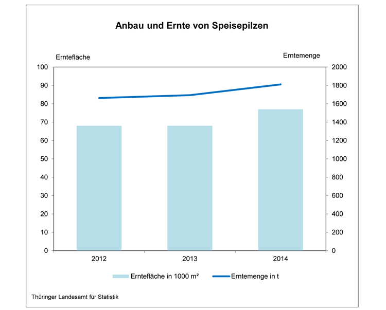 Quelle: Thüringer Landesamt für Statistik