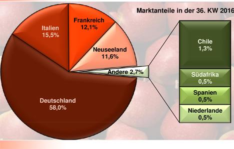 Grafik BLE-Marktbericht KW 36 / 16
