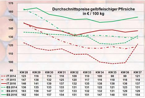 BLE-Marktbericht KW 37 / 16