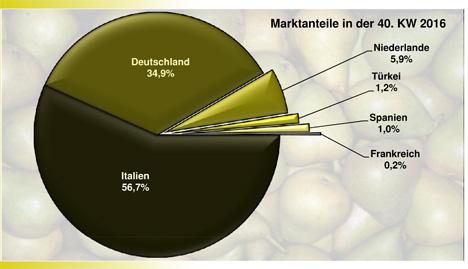BLE-Marktbericht KW 40 / 16