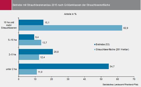 Statistik Rheinland-Pfalz
